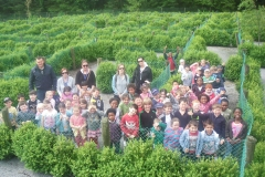 Group in Maze