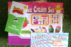Ice-cream-set